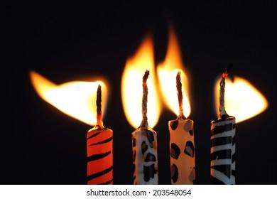 Animal print candles