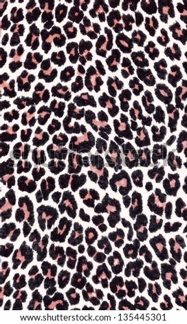 Animal Print Pattern Background Closer Look Stock Photo Edit Now