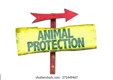 Animal Protection sign isolated on white