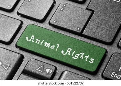 Animal rights/Animal rights