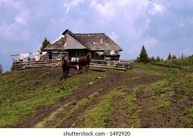 Animal shelter in the Carpathian Mountains - Romania
