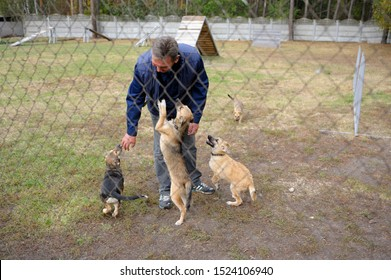 Animal shelter worker petting stray puppies inside an aviary behind bars. October 4, 2019. Municipal animal shelter.  Borodyanka, Ukraine