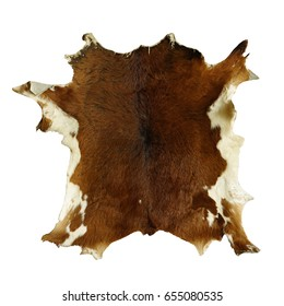 Animal skin leather isolated on white background. This has clipping path.
