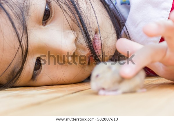 Animal Therapy. Asian girl and her hamster. Animal therapy is an alternative treatment to restore and heal the sick or have problems with physical, mental or emotional.