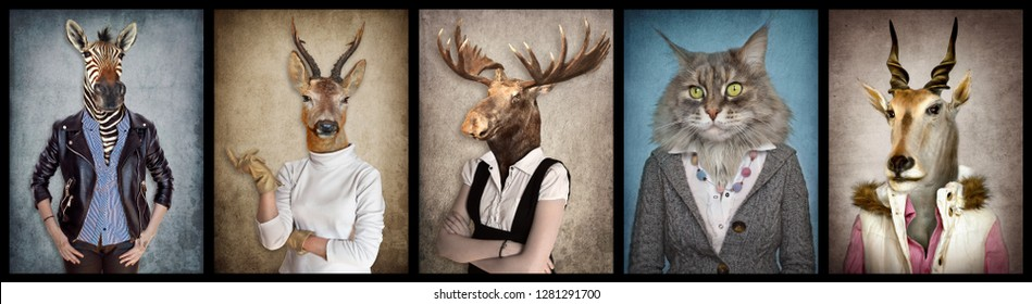 Animals in clothes. People with heads of animals. Concept graphic, photo manipulation for cover, advertising, prints on clothing and other. Zebra, deer, moose, cat, goat.  - Shutterstock ID 1281291700