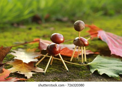 Animals made of chestnuts and matches on a background of autumn leaves