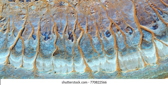 the animated forest, tribute to Pollock, abstract photography of the, deserts of Africa from the air,aerial view, abstract expressionism, contemporary photographic art, abstract naturalism,