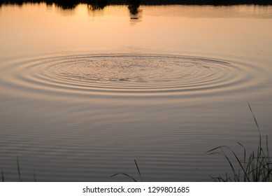animated waves on the water
