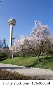 ANKARA / TURKEY - APRIL 09, 2017:Atakule and spring blossoms. Atakule is one one of the primary landmarks of Ankara.
