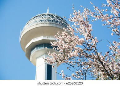 ANKARA, TURKEY - APRIL 09, 2017:Atakule and spring blossoms. Atakule is one one of the primary landmarks of Ankara.
