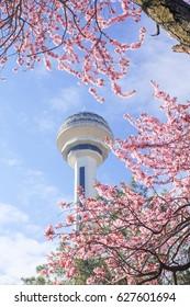 ANKARA, TURKEY - APRIL 09, 2017:Atakule and spring blossoms. Atakule is one one of the primary landmarks of Ankara.