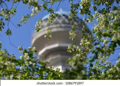 ANKARA, TURKEY - APRIL 16, 2018: Atakule and spring blossoms. Atakule is one one of the primary landmarks of Ankara. - Turkey