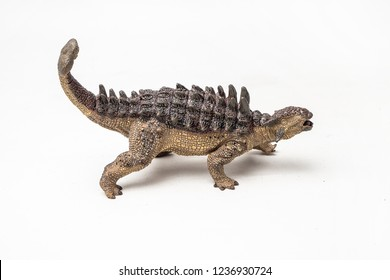Ankylosaurus Dinosaur on white background .