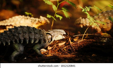 Ankylosaurus is a herbivore genus of armored dinosaur, the dinosaur from the very end of the Cretaceous period. on blur background. closeup dinosaur and monster model.