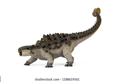 Ankylosaurus herbivores dinosaur living in cretaceous. have a hard armor cover and large pendulum at tail tip is a weapon of self defense. isolated on white background.