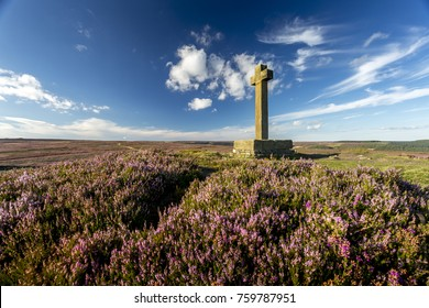 Anna Cross in the North York Moors with Heather and blue sky