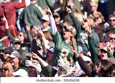 ANNAPOLIS, MD - OCTOBER 31: South Florida Bulls cheer on their team on the road at the Naval Academy  during the AAC game October 31, 2015 in Annapolis, MD.