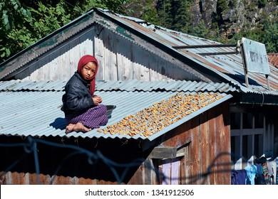Annapurna Circuit, Nepal -October 05, 2018 Nepali girl dryng gin