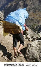 Annapurna, Nepal - 19 March 2008. Porter carrying heavy load on his back.