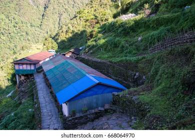 Annapurna sanctuary trek in Nepal
