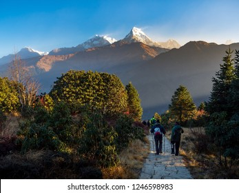 Annapurna South Mountain at the sunrise time from hiking way to Poon Hill, Himalaya mountain,Nepal