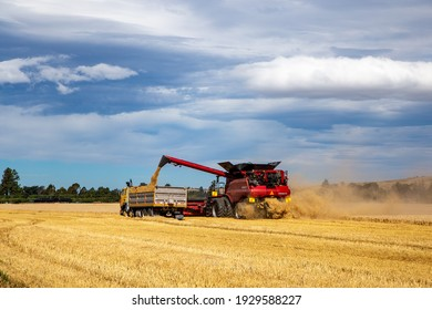 Annat, Canterbury, New Zealand, March 5 2021: A large modern Case harvester with new automated technology, at work harvesting barley on a windy autumn day