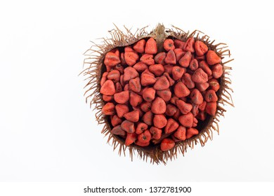 Annatto seeds on white background, top view