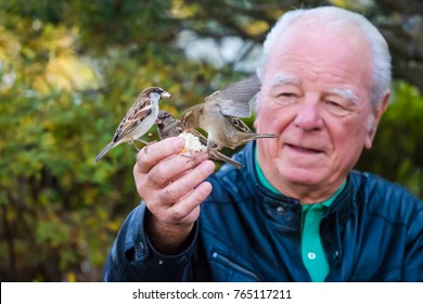 Annecy , France - October 21 2017 Man feeds birds by hand down by the lake