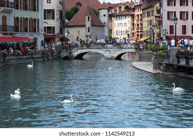 ANNECY, HAUTE SAVOIE / FRANCE JUILY 22 2018: the thiou and its white swan, around the old town and its tourists