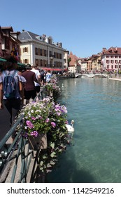 ANNECY, HAUTE SAVOIE / FRANCE JUILY 22 2018: at the edge of thiou and the canals where flanks swans, overlooking the old town of annecy, tourists enjoy the beautiful day