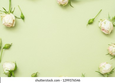Anniversary congratulation flower background. White rose frame with free space.
