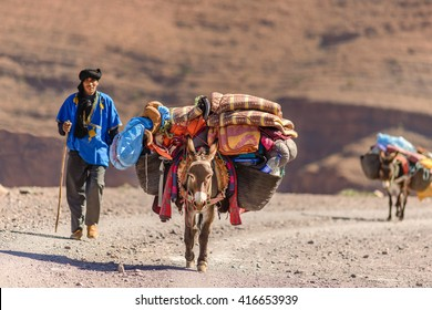 ANNMR, MOROCCO - OCT 29, 2015: Donkeys used to carry luggage near Annmr in Morocco.