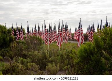 Annual Field of Honor, Newport Beach, California, USA