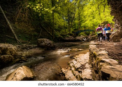 Anonymous group of tourists walking on shore of rocky stream in forest of North Caucasus.