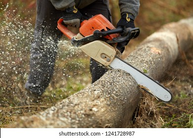 Anonymous lumberjack with chainsaw cutting logs