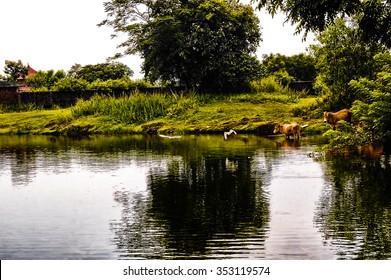 Another shot at Wadukuntha Lake in Kannur District of Kerala.