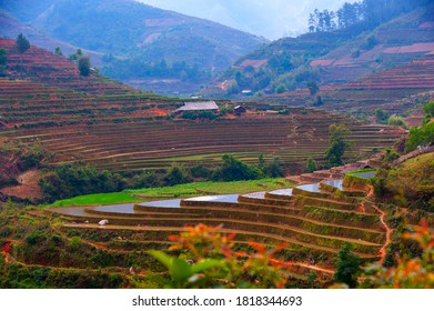 Another view of terraced rice fields in Northwest Vietnam, photo taken in the watering season.