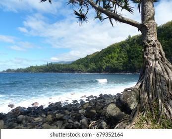 Anse des Cascades bay, La Réunion island, june 2017