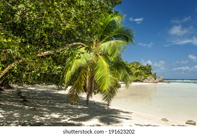Anse Union beach located in  plantation  L�¢??Union Estate in the west of La Digue island,  Seychelles