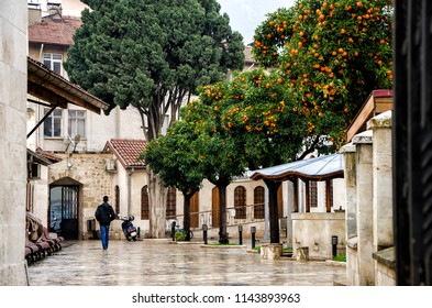 Antakya, Turkey - January 14, 2018: Mosque yard with mandarin trees, motocycle and men's back