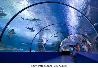 ANTALYA, TURKEY - JUNE 16: Children inside the tunnel of the oceanarium at the aquarium on June 16, 2015 in Antalya, Turkey