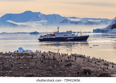 Antarctic cruise ship in the lagoon among icebergs and Gentoo penguins colony on the rocky shore of Neco bay, Antarctica