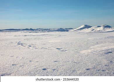 Antarctic landscape, ice and snow desert, snowy hills on a frozen plain. The ridges in the sea, snowy hills on a frozen plain, blue sky