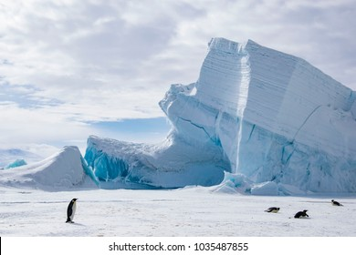 Antarctic typical landscape