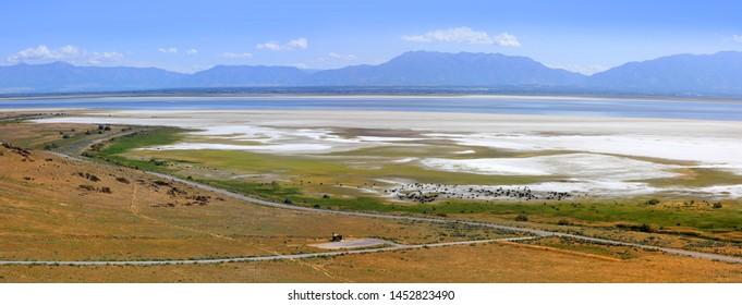 Antelope island near Salt lake city panoramic view