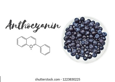 Anthocyanin chemical structure and bilberries (european blueberries, Vaccinium myrtillus L.) isolated on white background.