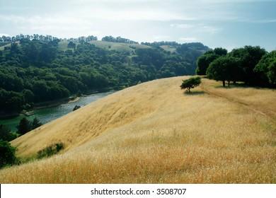 Anthony Chabot Regional Park in California