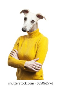 anthropomorphic dog portrait. woman body with greyhound's head