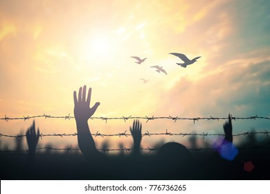 Anti slavery day concept: Silhouette refugee hands raising and barbed wire on autumn sunset background