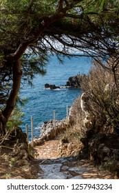 ANTIBES, FRANCE - SEPTEMBER 14, 2018: Vertical image of coastal path on the Cap d'Antibes framed by trees and shrubs.